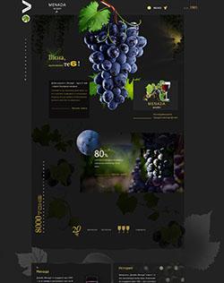 葡萄酒宣传页slt.jpg
